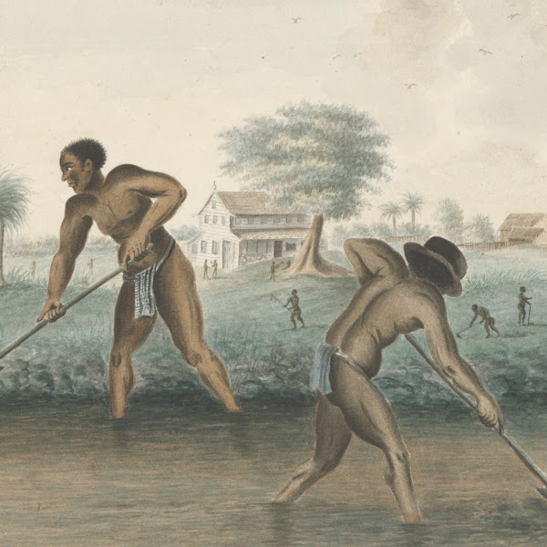 Anonymous, Enslaved Men Digging Trenches, c. 1850, Rijksmuseum. Amsterdam, Netherlands. Exhibitions Summer 2021