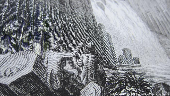 Alexander von Humboldt, Basalt prisms at San Miguel Regla (detail), from Views of the Cordilleras and monuments of the indigenous peoples of America.