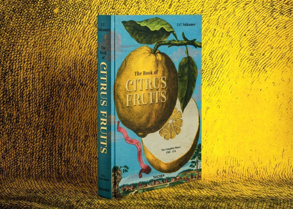 The Book of Citrus Fruits is a fascinating art book that shows us a range of exotic fruit in their settings. Book cover of J. C. Volkamer. The Book of Citrus Fruits by Iris Lauterbach, Taschen, 2021.