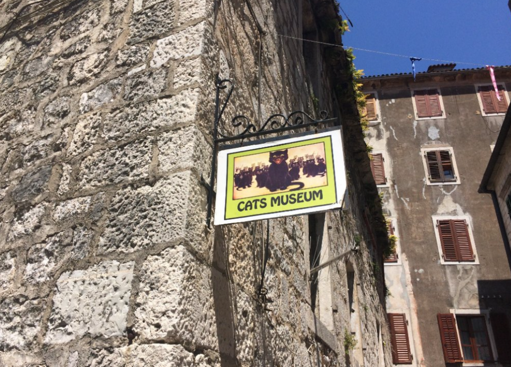 Outside Cats Museum in Kotor, Montenegro.