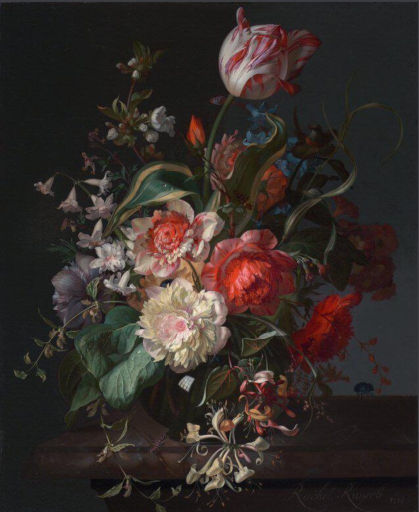 Rachel Ruysch, Flowers in a Glass Vase with a Tulip, 1716, The National Galery, London UK